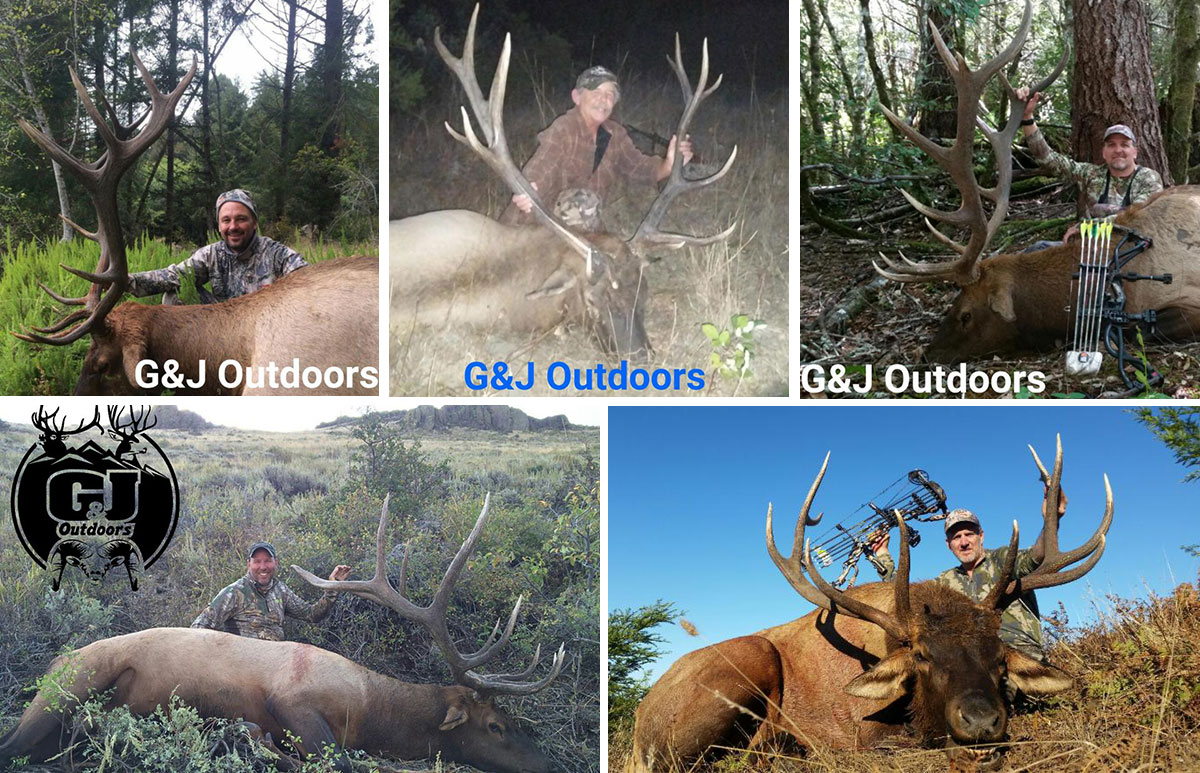 2015 Roosevelt & Rocky Mountain Elk Hunting Results