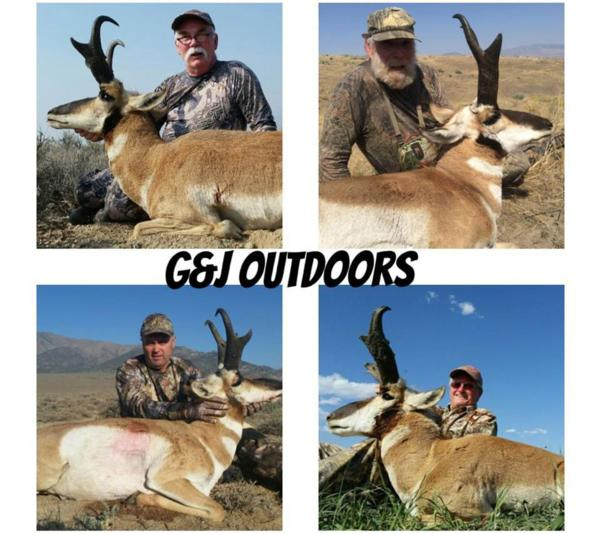 2015 Nevada Antelope Hunts