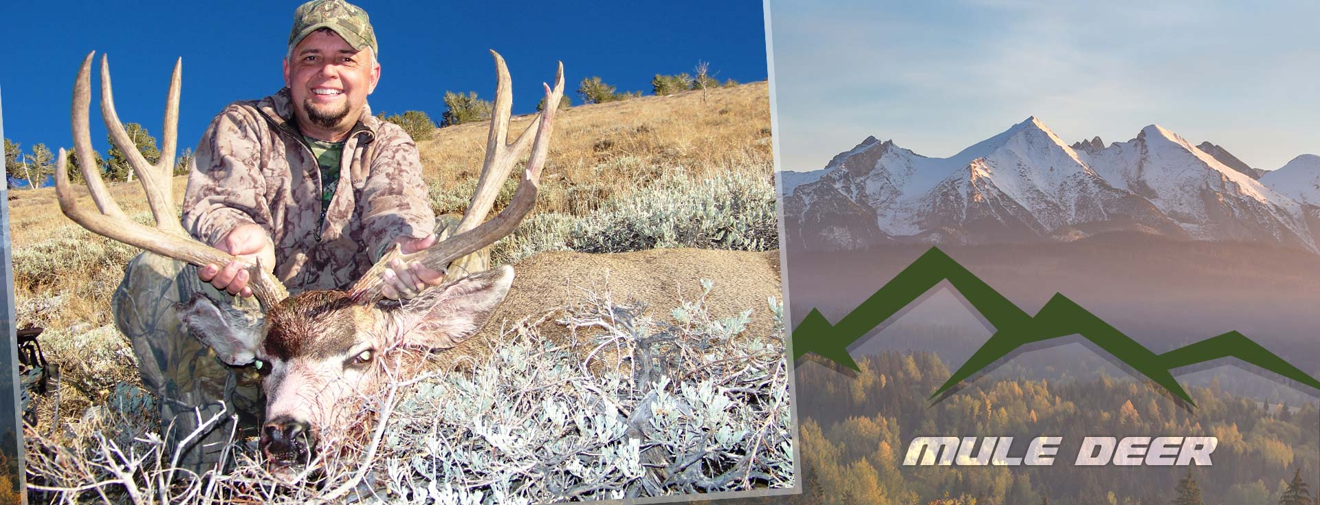 Nevada Mule Deer Hunting Guide & Outfitter